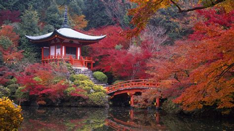 56 Pagoda HD Wallpapers   Background Images - Wallpaper Abyss